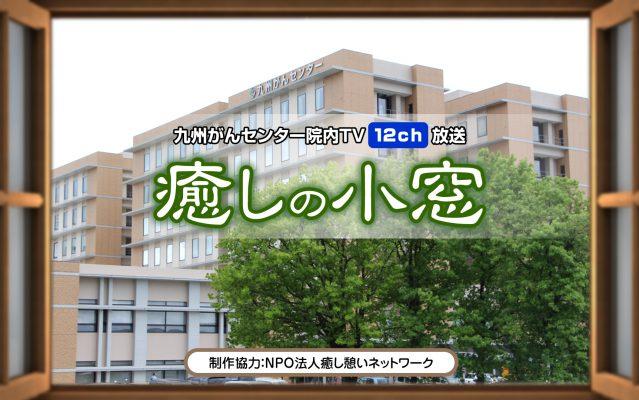 九州がんセンター/癒しの小窓